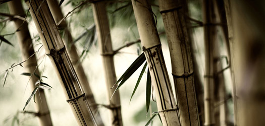 Гуань Инь - гадание на бамбуковых палочках онлайн